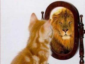 kitten-lion-mirror-300x225
